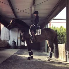 |MARKENNENNUNG| outfit check Helm: Pikeur Oberteil: Pikeur Hose/Gürtel: Pikeur Handschuhe: Roeckl Stiefel: Königs Trense/Sattel: Stübben Gurt: Mattes Schabracke: Eskadron Gamaschen/Glocken: Eskadron #ootd#potd#eskadron#eskadronoutfits#equestrian#fashion#outfitinspiration#horsebackriding#dressage#horse#pikeur#stübben Fashion Fashionable Ideas Party Clothes Makeup Jewelry Trends Trend Trending