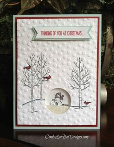SU White Christmas Shaker Card cropped Effective use of the embossed background