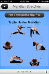 Image result for meridians and yoga