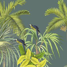 Collection Andaman - Koh Chang L600xH270 - 6 lés de 100 cm - Ultra mat