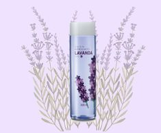 Colônia refrescante Lavanda Avon (R$ 20,99) Avon, Voss Bottle, Water Bottle, Perfume, Anime Naruto, Products, Beauty, Lavender, Water Bottles