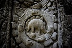 They have no idea why this stegosaurus creature is on the wall of angkor wat... The initial design and construction of Angkor Wat took place in the first half of the 12th century... and the stegosaurus roamed the Earth around 165-195 million years ago..