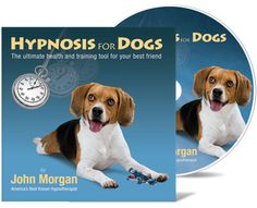 Hypnosis for Dogs