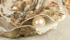 The Rising Star of Natural Pearls