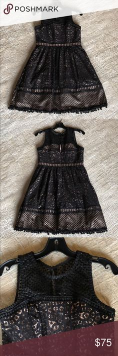 """Eliza J Petite Dress A """"lacy"""" black 4P Dress with a light camel color lining underneath. Dress measures 34 inches from shoulder seam to hem. I only wore this dress once. It's in excellent condition! Please examine photos for detail. Made of cotton, nylon & polyester Eliza J Dresses"""