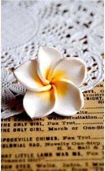 Fleur hawaienne blanche en pâte polymère