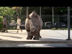 """Funny TNT Energy Drink commercial ''Rhino"""" - YouTube"""