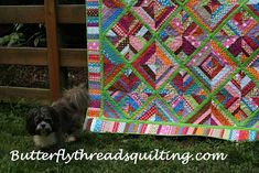 Butterfly Threads Quilting Books and Quilt Classes in Georgia by Diane D. Quilting Templates, Quilt Patterns, Alabama Quilt, King Size Quilt, Online Friends, Quilt Festival, Polka Dot Fabric, Book Quilt, Quilt Kits
