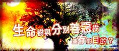 . 2010 - 2012 恩膏引擎全力開動!!: 生命樹與分別善惡樹並存的目的?