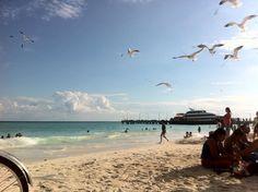 #PlayadelCarmen #Mexico #MexMonday > http://mayanexplore.com/riviera_maya_destinations_det.php?m=30=24