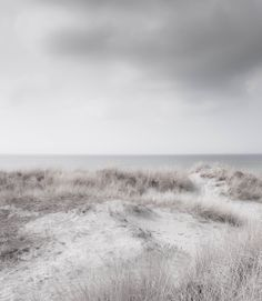 Silent beach. Photo by Lise Ulrich