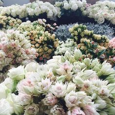 Here are just some of the hundreds of fresh blooms that decorated the LC Lauren Conrad runway!