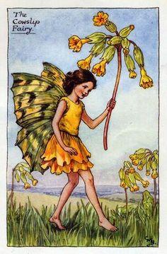 Cowslip Flower Fairy Vintage Print, Cicely Mary Barker « The Flower Fairy Shop