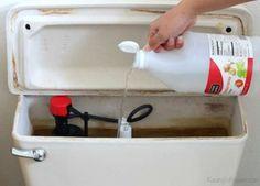 Nettoyer le réservoir de chasse d'eau avec du vinaigre