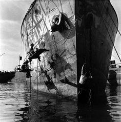 Des hommes peignent la coque d'un bateau à Casablanca - Anita Conti, 1941