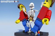 Stephan Niks reicht anatomische Figuren bei Lego Ideas ein  Mit dem Projekt Lego Ideas hat Lego ein großartiges Projekt geschaffen, in dem Bastler aus aller Welt Konzepte für ihre eigenen Bausätze einreich...
