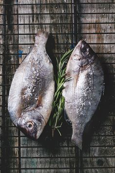 Top view on two raw dorado fish with rosemary and sea salt on grill over old wooden table. See series