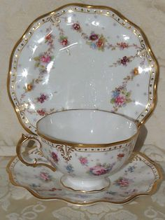 Moss Rose Royal Sealy China Japan My Cup And Saucer