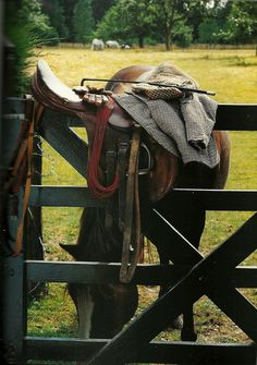The most important role of equestrian clothing is for security Although horses can be trained they can be unforeseeable when provoked. Riders are susceptible while riding and handling horses, espec… English Country Manor, English Countryside, Country Farm, Country Chic, Country Girls, Country Roads, Equestrian Chic, Equestrian Fashion, Equestrian Outfits