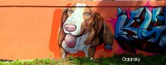 Graffitti — at Ave. Juan Ponce de León, Pda. 25, Santurce, Puerto Rico.