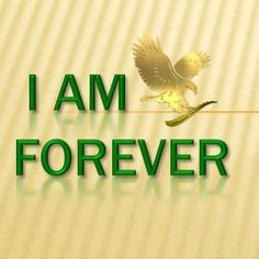 Forever Living has the highest quality aloe vera products and is recognized as the world's leading multi-level marketing opportunity (FBO) for forty years! Aloe Vera Gel Forever, Forever Living Aloe Vera, Aloe Blossom Herbal Tea, Forever Bright Toothgel, Aloe Heat Lotion, Aloe Berry Nectar, Forever Freedom, Aloe Vera Uses, Sante Bio