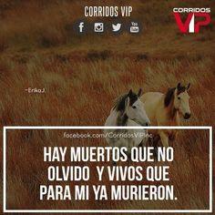 Suele pasar.!  ____________________ #teamcorridosvip #corridosvip #corridosybanda #corridos #quotes #regionalmexicano #frasesvip #promotion #promo #corridosgram - http://ift.tt/1HQJd81