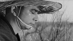 Zatoichi monogatari (1962) http://www.imdb.com/title/tt0056714/