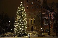 Joulun+aikaan+-+Turun+tuomiokirkko+76429.jpg 600×400 pikseliä