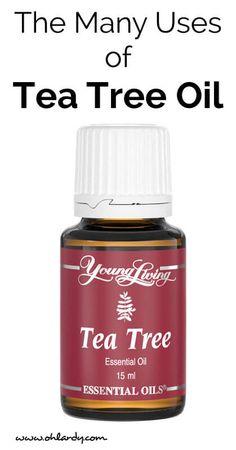 10 Uses for Tea Tree Essential Oil - Oh Lardy