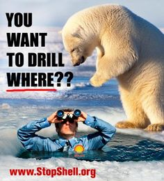 Polar Bears can't protect themselves from Big Oil, only we can Keep Shell Out of the Arctic. Please share, please act. www.StopShell.org