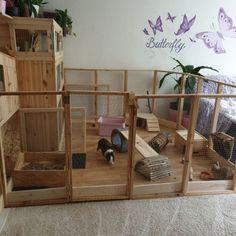 Diy Bunny Cage, Diy Bunny Toys, Diy Guinea Pig Cage, Guinea Pig House, Bunny Cages, Rabbit Cages, Indoor Rabbit House, Indoor Rabbit Cage, House Rabbit