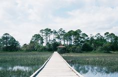 Hunting Island State Park, Beaufort, SC