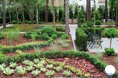 Poradnik: Jak zaprojektować i założyć ogród, cz. 3 - projektowanie - Ogrodowisko