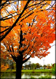 McCarty Park, West Allis, Wisconsin, USA