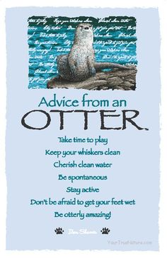 Advice from an Otter