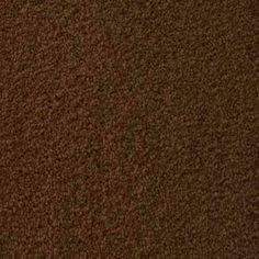 TOWNSEND SADDLE Texture Active Family™ Carpet - STAINMASTER®