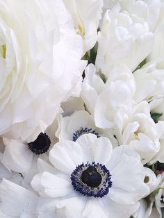 Kate Arends #photo #floral #arrangement #blackandwhite #white #wedding #flowers via @stellerstories