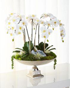 T&C Floral Company Orchids & Succulents Faux Floral Arrangement