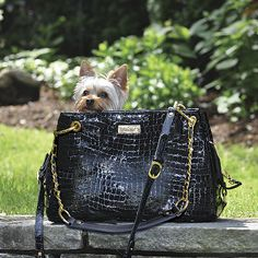 Crafted from elegant Italian leather, our Windsor Pet Carrier features a fashionable crocodile-inspired pattern that lets you transport your...
