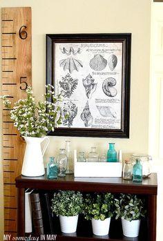 Free Printable Decorative Seashell Botanical Print featured on Ella Claire
