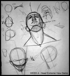 Analytical Figure Drawing SP08: Week 4 - Head Demo