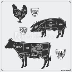 Cuts of meat. Chicken, pork and beef. Beef Flank, Vintage Style, Vintage Fashion, Cut Photo, Royalty Free Images, Thighs, Pork, Meat, Chicken