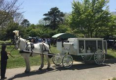 Final Farewell Horse Drawn Hearse at #Amityville #Cemetery on Long Island, NY