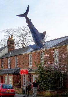El Headington Shark, Oxford, Reino Unido