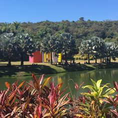 O museu é composto de várias galerias e, entre elas estão dispostas outras obras de arte, a vegetação nativa e o projeto paisagístico de Burle Marx. Imagem: acervo pessoal Amanda Tiedt.