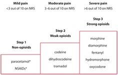 WHO analgesic ladder