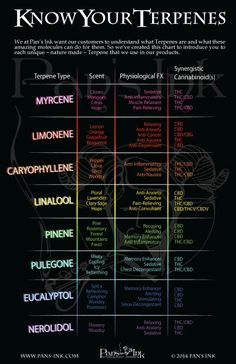 Know Your Terpenes.