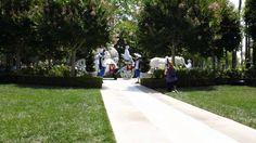 Disneyland Wedding Trumpeters at the Rose Court Garden #Disneywedding