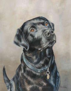Black Labrador painting by Sarah Eden #oilpainting #animalart #dogart…