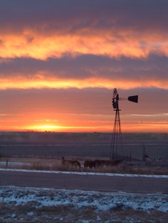 Sunrise in western Kansas Colby Kansas, Kansas Day, State Of Kansas, Farm Windmill, Old Windmills, Back Road, Beautiful Sunrise, Le Moulin, Big Sky
